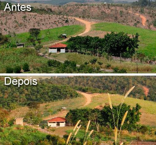 Plantio de 22.100 mudas de árvores em 23,5 ha na unidade do Instituto Nacional de Pesquisas Espaciais (INPE) em Cachoeira Paulista