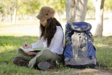 Escreva sobre o Parque Ibirapuera em São Paulo