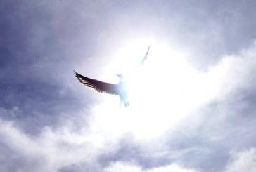 Especial Religião – O Espiritismo