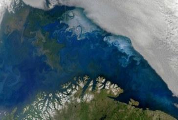 Bolsas para Reportagem sobre o impacto das mudanças climáticas