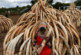 Alerta máximo para o tráfico de marfim na África