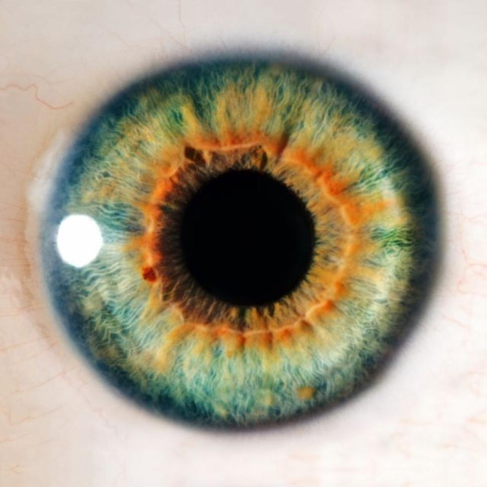 Tratamento com células-tronco traz esperança a quem perdeu a visão