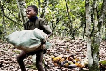 O trabalho escravo no Brasil