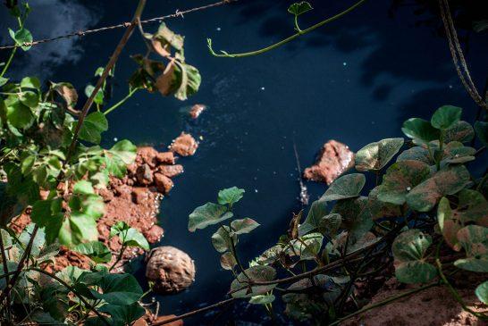 Riacho Tué em Ribeira do Pombal -BA pede socorro.