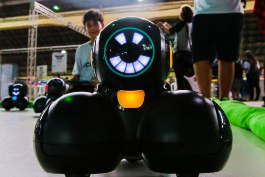 iv-science-days-robo